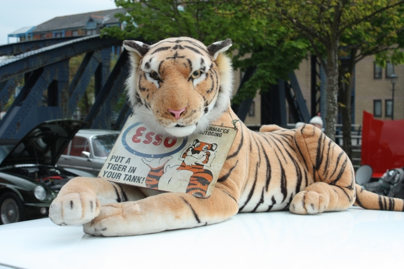 A Tiger in Your Tank